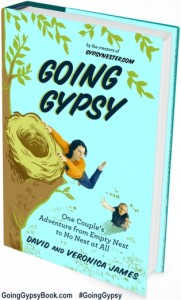 going-gypsy-book-cover